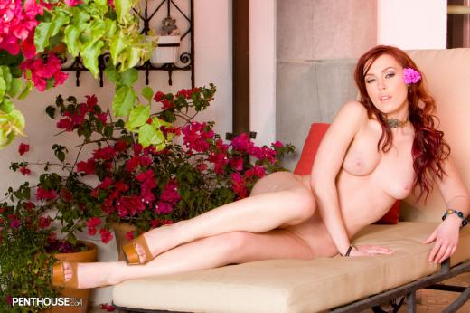 Alexandra Ivy, redhead, strip, lingerie, couch, flower